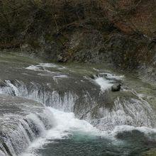 植物園内に「すだれ滝」の観瀑スポットがあります
