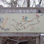 高畑山の山肌に咲くアカヤシオを見に行きました