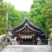 知立神社内 「知立公園 花しょうぶ祭り」に行ってきました