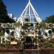 北海道農業高校生ガーデニング甲子園に注目