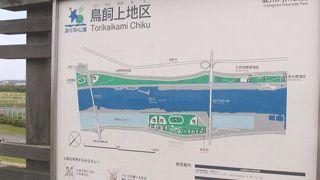淀川河川公園 鳥飼上地区