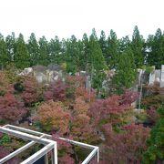 水景園の紅葉はすばらしい