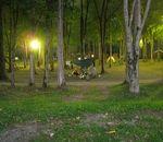 丸瀬布いこいの森オートキャンプ場