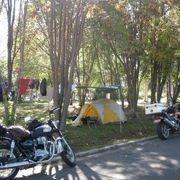 使いやすいキャンプ場
