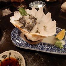 シャコ貝の刺身