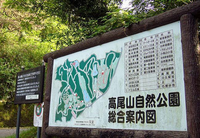 広葉樹の森の中に点在する広場やため池