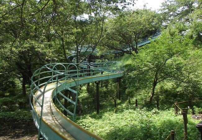ローラーすべり台  (長さ100m強)