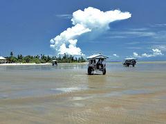 西表島のツアー
