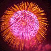 今年の花火は最高でした!