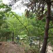 自然豊かで大好きなキャンプ場。
