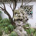 写真:ポートランド伝統的中国庭園