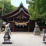 知立神社に隣接した庭園の中に花菖蒲がありました。