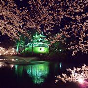 三大夜桜の1つ
