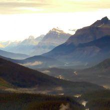 峠からの景色(コロンビア大氷原の方向)
