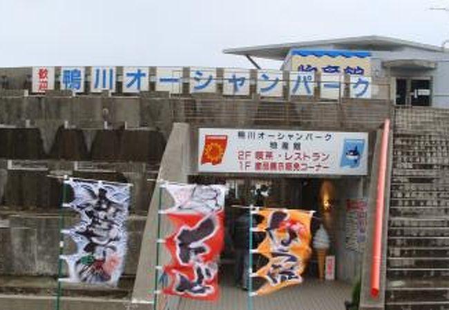 建物の入口