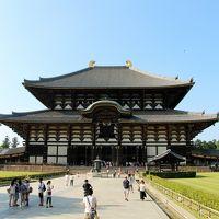 東大寺 写真
