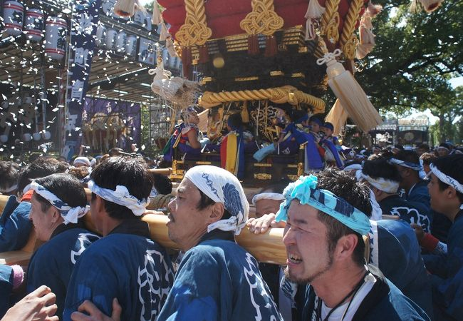 百舌鳥八幡宮秋祭り 月見祭