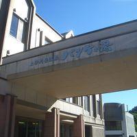 上砂川岳温泉 パンケの湯 写真