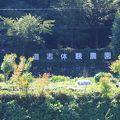 写真:道志体験農園