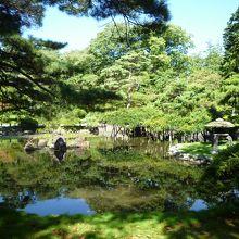 公園奥には池のある風景も。