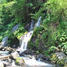 真夏に見たい涼を感じる滝