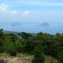 鏡山から見た松林