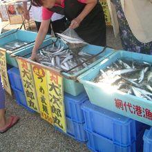 朝獲れ魚つめ放題200円でした。