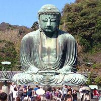 高徳院(鎌倉大仏) 写真