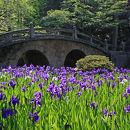 吉浜菅原神社