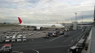 羽田空港ターミナル ビッグバード