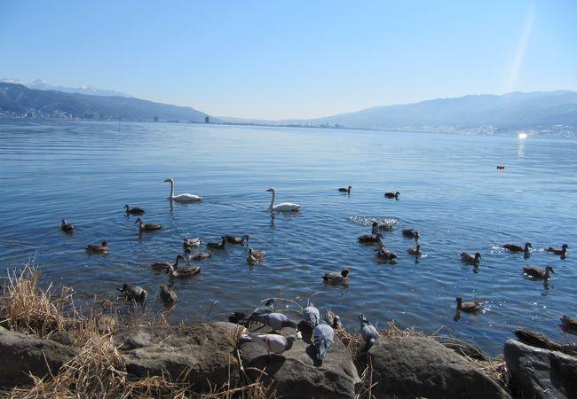 諏訪湖(長野県諏訪市)