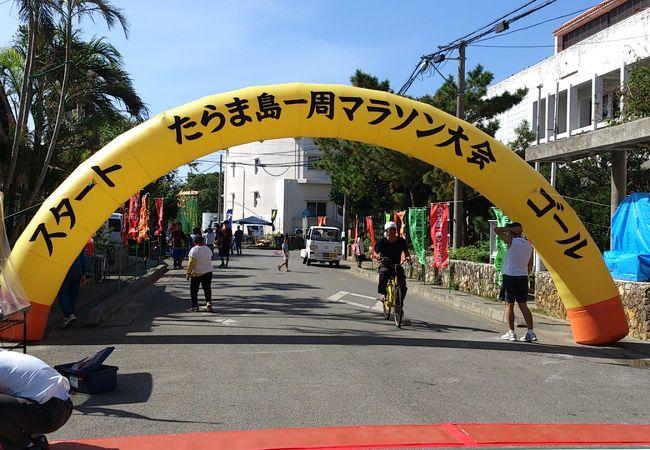 たらま島一周マラソン大会
