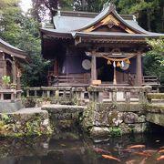 池の中にある神社です