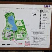 ジョギングコース大回りは1.6km