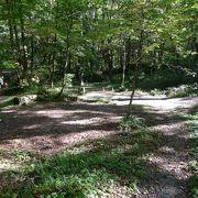 森の中のオートキャンプ