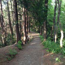 あけぼの子どもの森公園の上の遊歩道