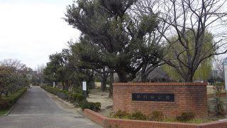 早稲田公園(埼玉県三郷市)