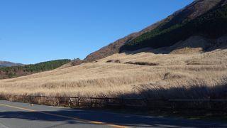 仙石原のススキを見るには,駐車場が完備されています。
