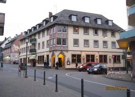 Hotel Rudesheimer Hof - Superior 写真