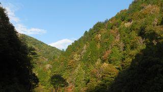 紅葉時には美しい風景を見ながらドライブができます!