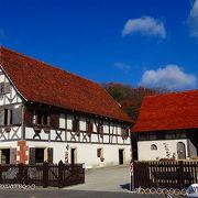 アルザスと云えば・・・ワイン街道と木組みの家、ともにリトルワールドにありました。