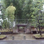 参道沿い竹林に包まれ癒し空間で落着きま~す。