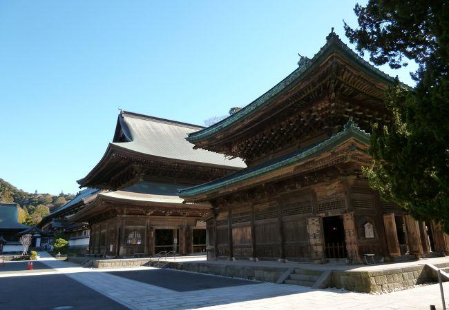 仏殿とその奥の法堂