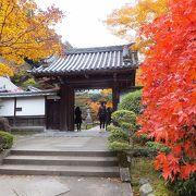 「縁結びの松」 南禅寺の 奥にある