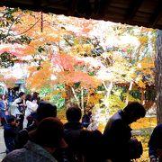 蓮華寺入口は人で溢れていました