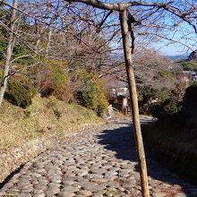 綺麗に敷き詰められた石の道