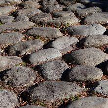 綺麗にそろった石