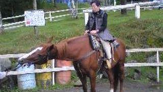 ホープロッヂ乗馬牧場