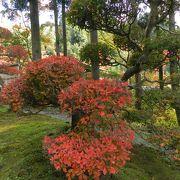 静かなお寺でゆったりと紅葉&庭園鑑賞