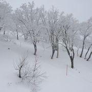 雲海テラスと雪サクサク
